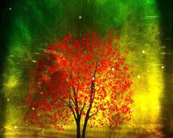Twilight -- 8x10 tree art print giclee print, art, tree art,print,gift,art collectibles,wall art,wall decor,wall decor