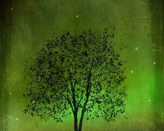 Emerald Bewitched -- 8x10 tree art print giclee print, art, tree art,print,gift,art collectibles,wall art,wall decor,wall decor