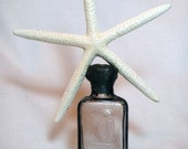Vintage clear bottle with pencil white starfish soldered on top