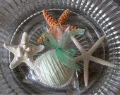 Wedding Cake Bites: 24 Florida Key Lime Cake Truffle Favors for your beach wedding dessert table