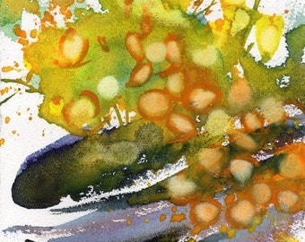 Fresh Pick No.137, limited edition of 50 fine art giclee prints