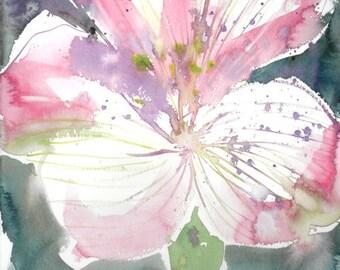 Fresh Pick No.254, 11x15, original watercolor