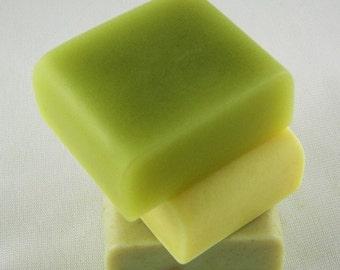 Minimalist Series M1 Silicone Soap Mold ( Soap Republic )