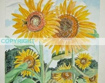SALE Love & Bloom - 11 X 14 Signed Art Print Sunflower botanical art flower