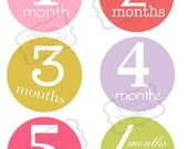 Instant Download-Birth to 1 year, month by month Baby GIRL Iron On Transfer Set- Printable PDF
