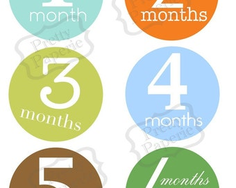 Instant DOWNLOAD-Birth to 1 year, month by month Baby BOY Iron On Transfer Set- Printable PDF