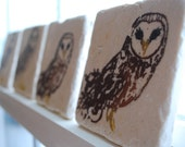 Natural Stone Barn Owl Drink Coasters