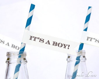 It's a boy! Straws and Pennants by Loralee Lewis