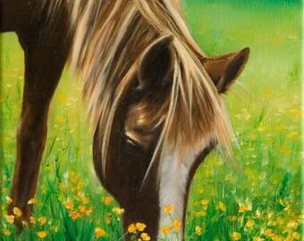A TASTE OF SUMMER - an original oil painting by Jodi J. Callahan