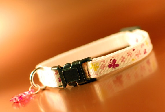 Cat Collar - Butterfly Patterned Breakaway Safety Collar