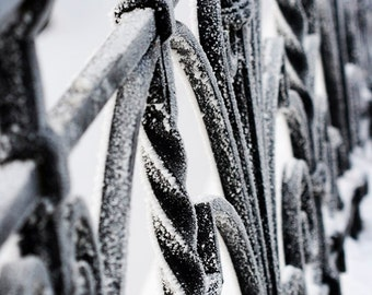 Lace in the snow - Fine Art Photograph