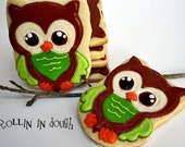 Owl Cookies, Owl Cookie Favors - 1 Dozen