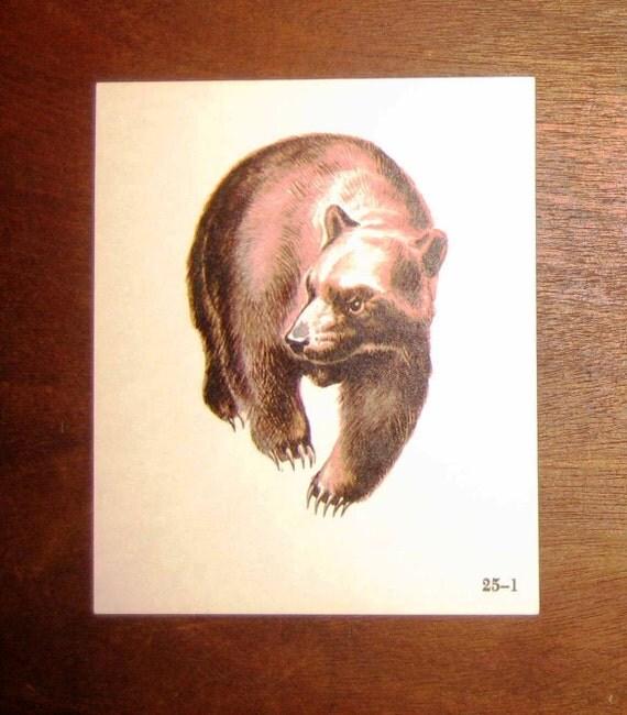 Vintage 1950's Double Sided Bear & Boy Flashcard