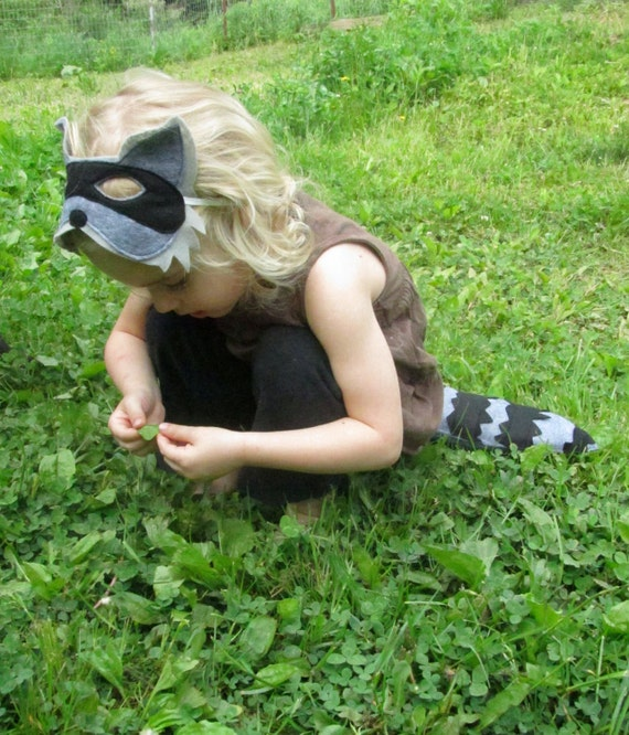 Raccoon Mask and Tail Costume