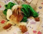 Green Elf Dog Costume