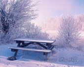 Cold Winter Day (multiple sizes offered)
