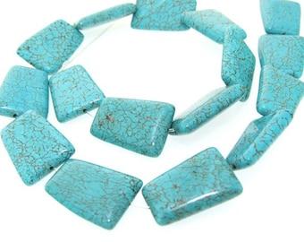 Trapeze Turquoise Gemstone Beads 18-22mm Strand