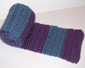 Handmade Purple and Blue Stripped Crochet Scarf