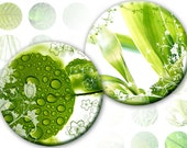Green leafs macro digital collage sheet 1 inch circles (327) Buy 3 - get 1 bonus