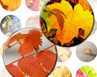 Autumn foliage digital collage sheet 1.5 inch circles for bottlecap crafts pins buttons magnets Download Vol. 2 (118) Buy 3 - get 1 free