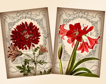 Vintage Garden Flowers 2.5 x 3.5 inch digital collage sheet ACEO ATC Scrapbooking Greeting Cards Decoupage (300) Buy 3 - get 1 free