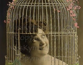 Caged Bird  vintage photo digital download