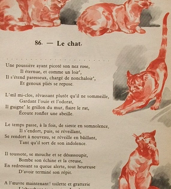 Vintage French Childrens Poem Illustrated Cats 1950