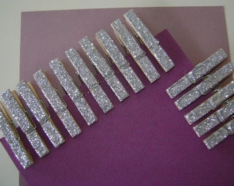 silver . petite . glitter clothespins