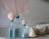 Set of 3 Vintage Aqua Glass Sea Life Bottles
