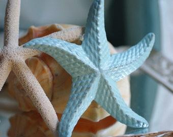 Cast Iron Starfish - Light Aqua
