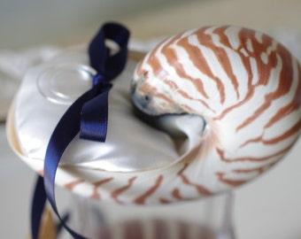 Beach Wedding Nautilus Shell Ring Bearer Pillow