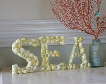 Seashell Decor - Nautical Decor Shell Covered Letters Spell SEA - Money Cowrie Shells