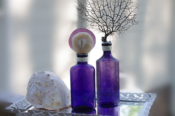 Set of 2 Vintage Purple Glass Bottles with Mushroom Coral, Moon Shell and Black Sea Fan