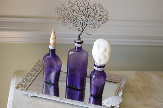 Beach Decor Set of 3 Vintage Purple Bottles with Black Sea Fan, Sea Biscuit and Mitra Mitra Seashell