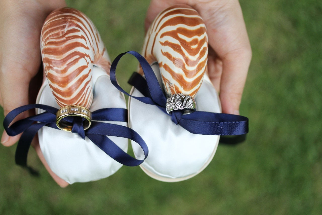 Beach Wedding Ring Bearer Nautilus Shell Eco Ring Bearer