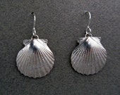 Scallop Earrings (medium)