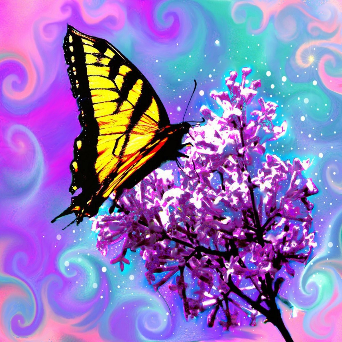 Digital Painting Fantasy Butterfly Abstract Art Print Energy