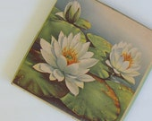 Art Deco Antique Box Floral Presentation  Box Handkerchief  Lithograph Water Lilies Stunning