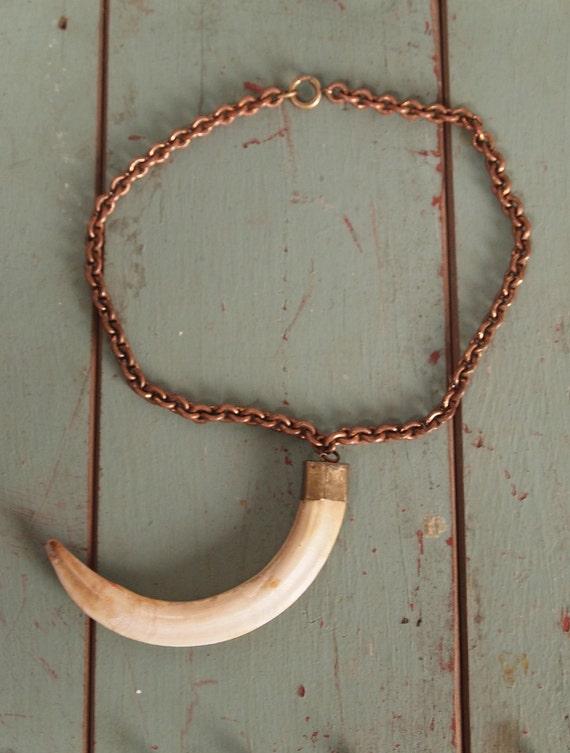 Vintage 40s Huge Animal Tusk Pendant Necklace Brass Chain Horn Boar