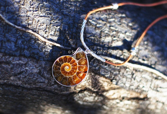 Time -ammonite fossil silver one of a kind necklace