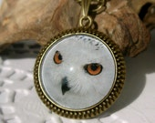 Snowy Owl, Bronze Plated Drop Cabochon Setting on a Chain