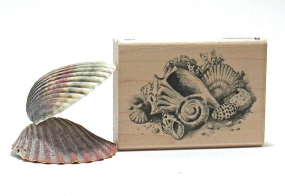Seashell Stamps (Set of 4)