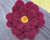 Cara's Crimson Brooch