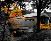 The LONG BRIDGE Home dreamy autumn leaves yellow decor artist signed black and white New England Fine Art Travel Photography print 11x17