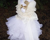 Girls Birthday Surprise Dress with a Twist of Chiffon