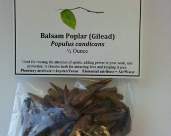 Balm-of-Gilead Buds or Balsam Poplar aromatic buds - Hoodoo herb for love