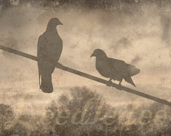 Birds on a Wire - Textured Vintage Style Original Photograph Distressed Beige Home Decor