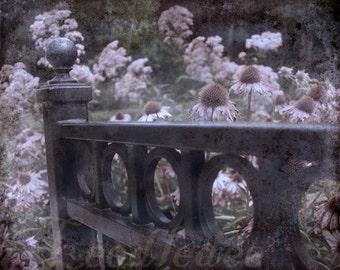 A Fond Fairwell - Vintage Style Original Photograph - End of Summer Purple Lilac Lavender Flowers Garden Gate Iron Fence
