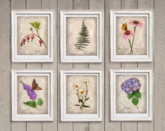 Set of 6 Botanical Photographs Prints - Vintage Style Shabby Chic Cottage Distressed Decor Sepia Tea Stained