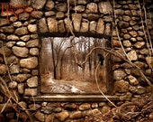 Stone Window with Crow - Original Photograph 11x14 - Woodland Forest Adventure Hike Mansion Ruins Brown Beige Home Decor Wall Art